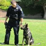 K-9 Eddie and his handler