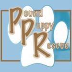 PPR Logo
